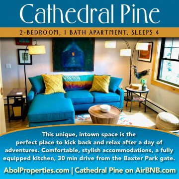 Cathedral Pine